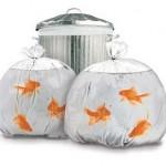 Bolsas de basura con efectos