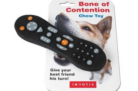 Mando de televisión para perros
