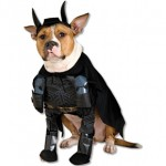 Disfraz Caballero Oscuro para perros, ¡Tu mascota más friki!