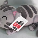 Peluche Dulce Gatito, The Big Bang Theory