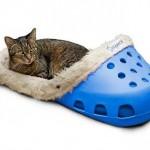Cama zapatilla para mascotas