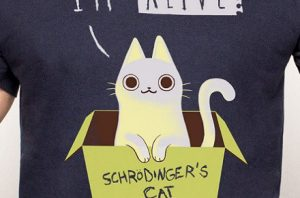 "Camiseta ""Schrödinger's Night"""