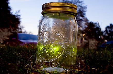 Tarro con luciérnagas electrónicas