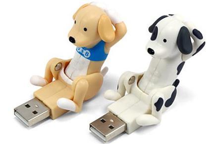 Perro USB que hace abdominales