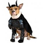Disfraz de Batman para perros