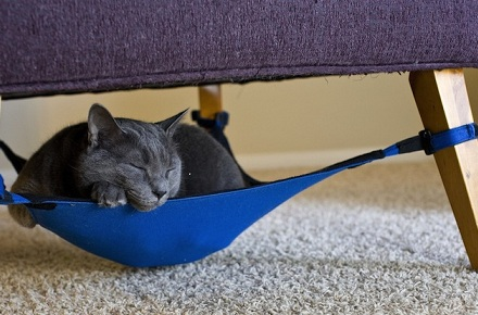 Cat Crib: hamaca para gatos